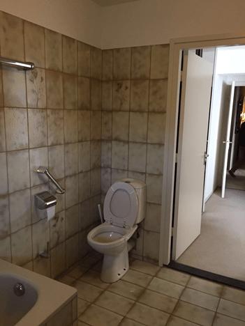 Toilet voor de verbouwing